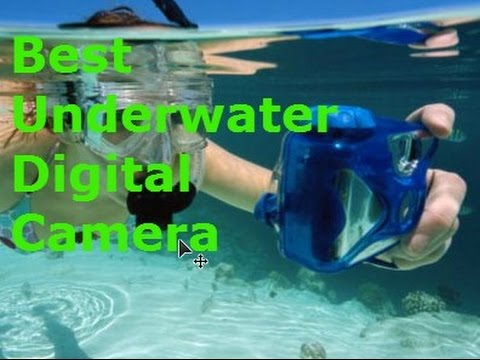The 5 Best Underwater Electronic Digicam 2016 – Assessments and Information